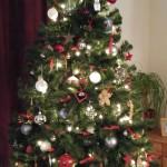 Praat ik dit jaar tegen mijn kerstboom?