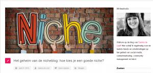 Niche-bloggen