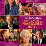 TheSecondBestExocticMarigoldHotel