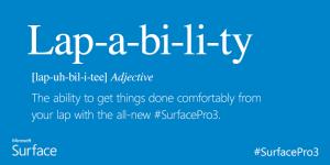 lapability_definitie