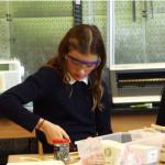 Maker Education als doorlopende leerlijn?