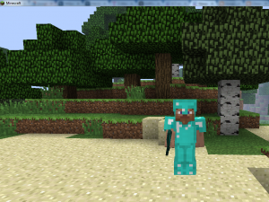 minecraft_screenshot