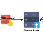 Reverse Proxy voor Docker met Let's Encrypt en Nginx